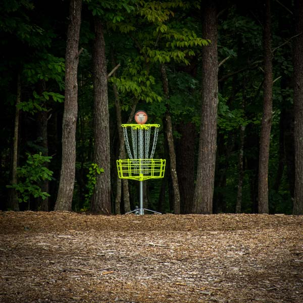 DGA Mach Bright-Powder Coated Target in Forested Disc Golf Course
