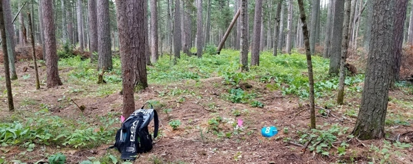 Course Collecting on the Iron Range – Tonn's Travels